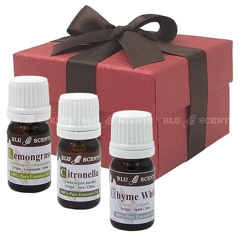 Bugs Off Pure Essential Oil Remedy