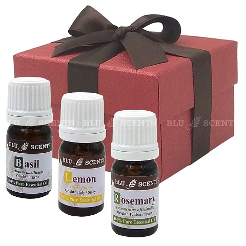 Memory Aid Pure Essential Oil Remedy