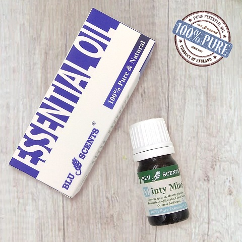 MINTY MIND 5ml Pure Essential Oil