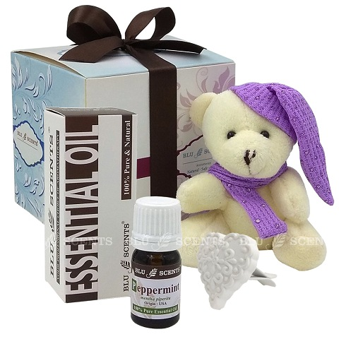 Peppermint Lovely Car Vent Clip Heart Diffuser Gift Set