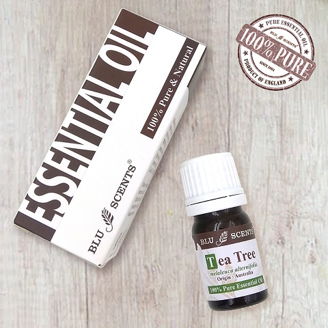 TEA TREE 5ml Pure Essential Oil